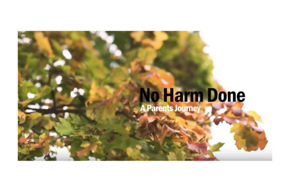 Picture of trees with the text 'No Harm Done'
