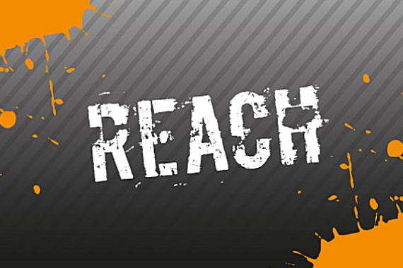 Compass REACH logo